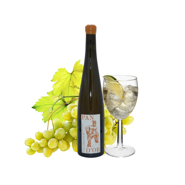 Montrer le produit de notre cave : le vin de France Pan d'or Viognier, un vin blanc